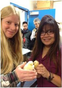 (Photo Courtesy of Jeremy Fontelar) Allison Kephart and Margret Esguerra with the baby chicks in their first days.