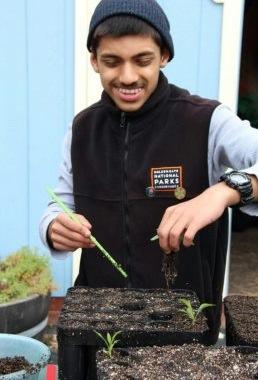 (Photo courtesy of the  Golden Gate National Parks Conservancy) Deapk Singh planting new seedlings