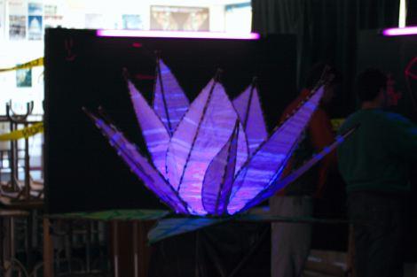 (Photo courtsey of Graham Cruickshank) Glowing purple flower at BAM 2010