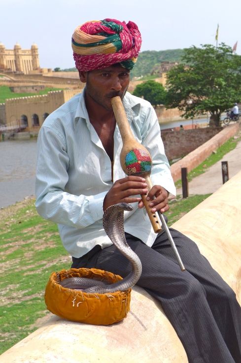 (Photo courtesy of Maddie Oaks) A snake charmer coaxes his cobra from a basket in front of the Amber Palace in Jaipur