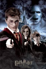 harry-potter-5-collage-i1406